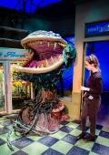 Making sure Audrey II is good to go.