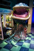 Setting up the final puppet for Audrey II.